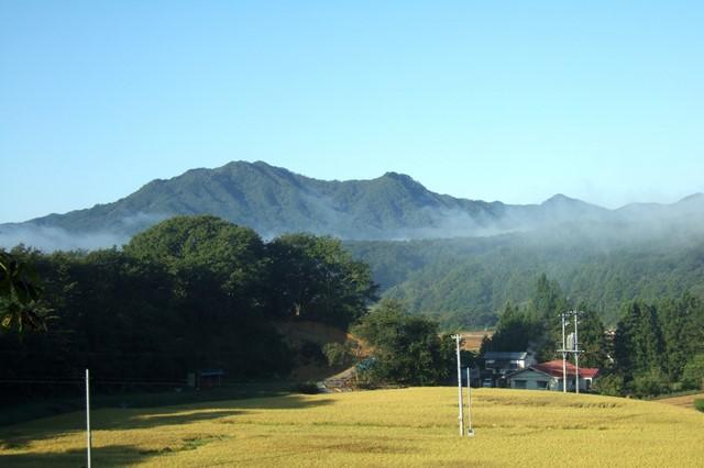 山田町の山々.jpg