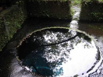2007 10.07 三島 湧水2.JPG